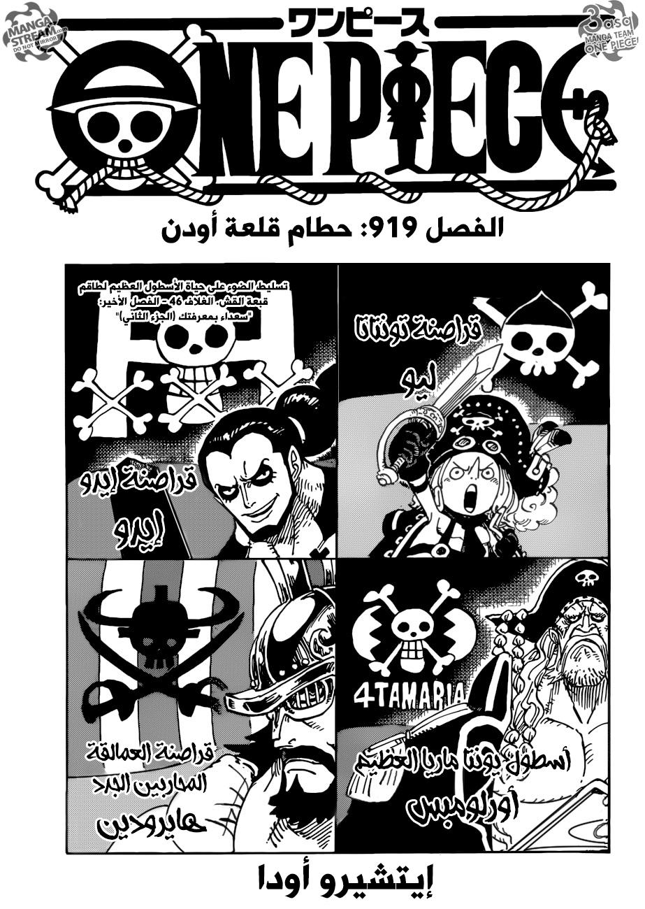 ون بيس 919, One Piece 919